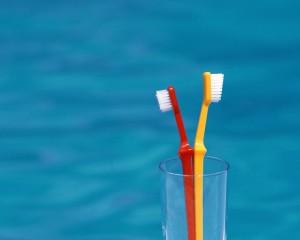 Бактерии на зубных щетках