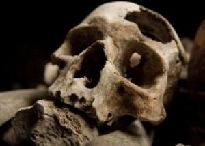 Налет на зубах предков расскажет о их здоровье